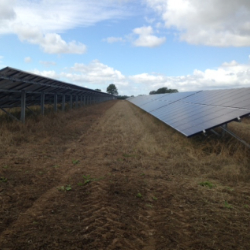 Solar Park 2 – all topped and ready for harrowing