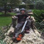 "Tree stump, chainsaw and ""lumberjack"""