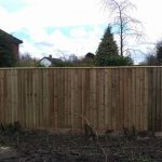 Nice close-board garden fence