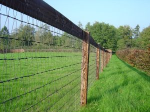 Keep Safe Fencing erected by Conservation Contractors of Devizes