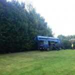 Hedge reduction Worton, Devizes