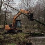 Removal of self-set alder trees in Devizes