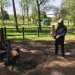 Stump grinding Marlborough