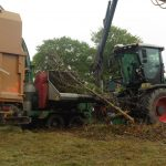 Mulching branches into biomass
