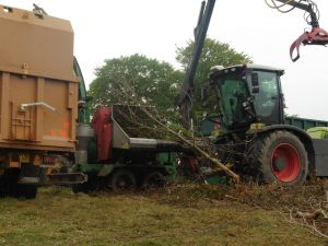 Converting waste timber to biomass