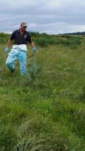 Scrub spraying Salisbury Plain