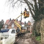 Our Cherry Picker conducting tree works for Pewsey Parish Council