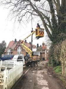 Health and safety tree works today for Pewsey Parish Council