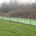 Newt fencing in Tidworth