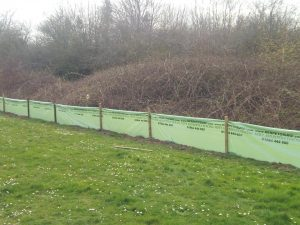 Newt-fencing-in-Tidworth
