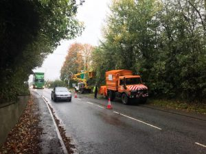 Tree reductions in Westbury