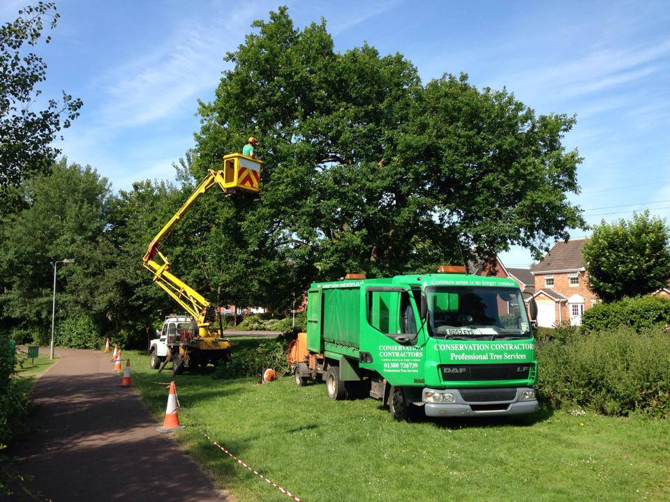 Matt reducing oak in Chippenham July 2014