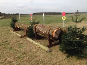 Tree trunks upcycled to horse jumps