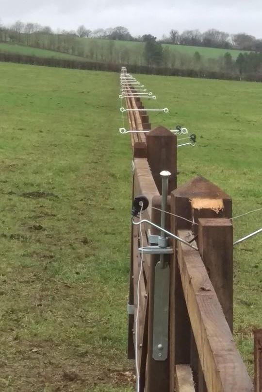 equestrian fencing with double sided electrical tape