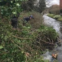 Watercourse clearing