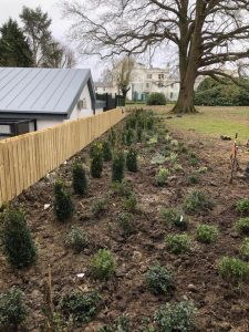 Landscaping at Ticehurst