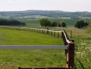 Manton Downs Racing Yard Project showing stud rail