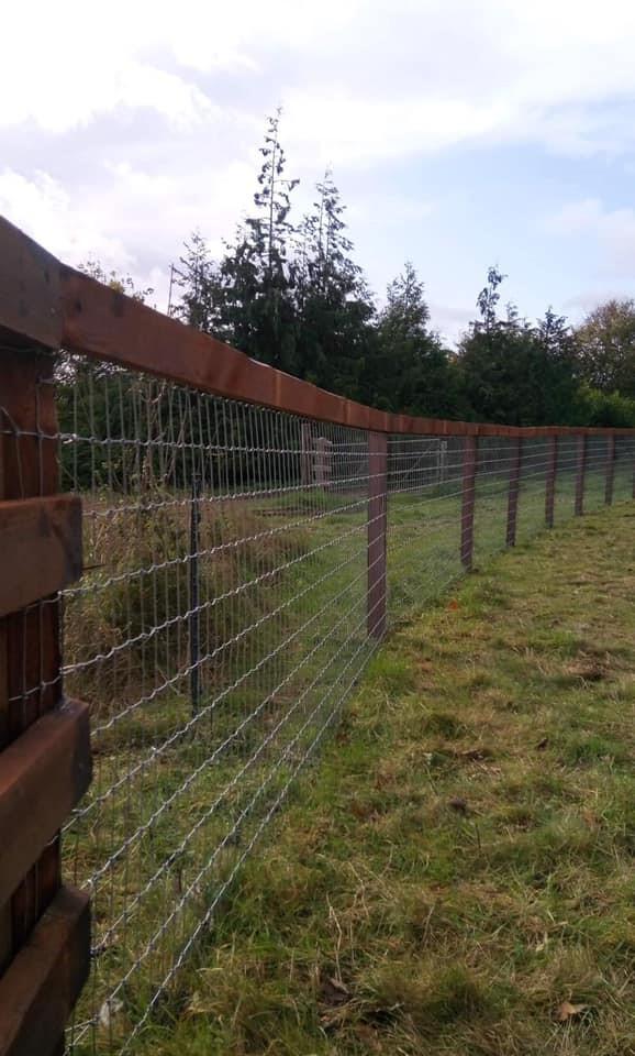 Tornado Wire's Torus Horse Fencing